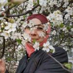 Лиля Османова